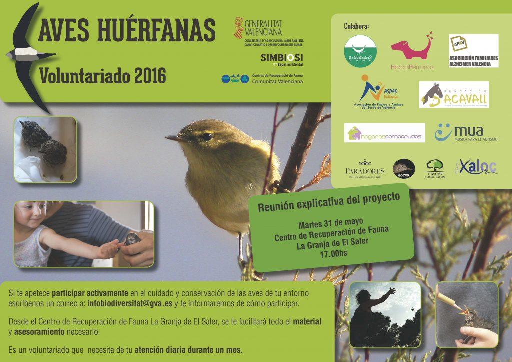 Cartel aves huérfanas 2016